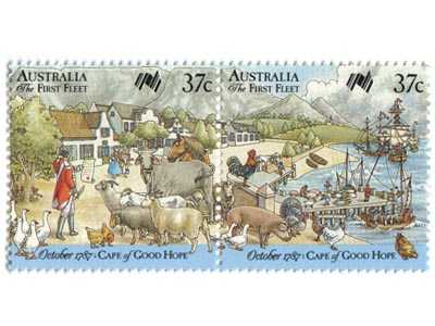 First fleet loading livestock, Cape of Good Hope